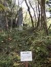 2008_110131